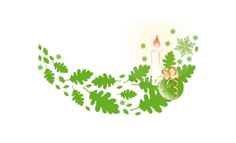 Bleaching – grünes Licht für Ihr schönstes Feiertags-Lächeln!